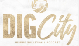 Dig City podcast